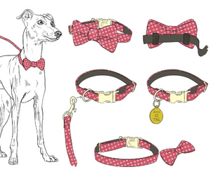 Cape Cod Bow Tie Collar