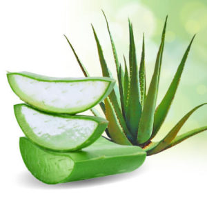 Unknown Benefits of Aloe Vera Gel