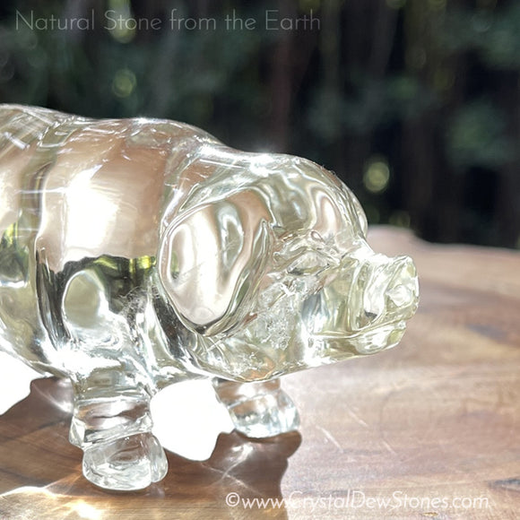 Golden Crystal Pig