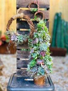 Holiday Succulent Gifts - Living Wreaths & Succulent Trees