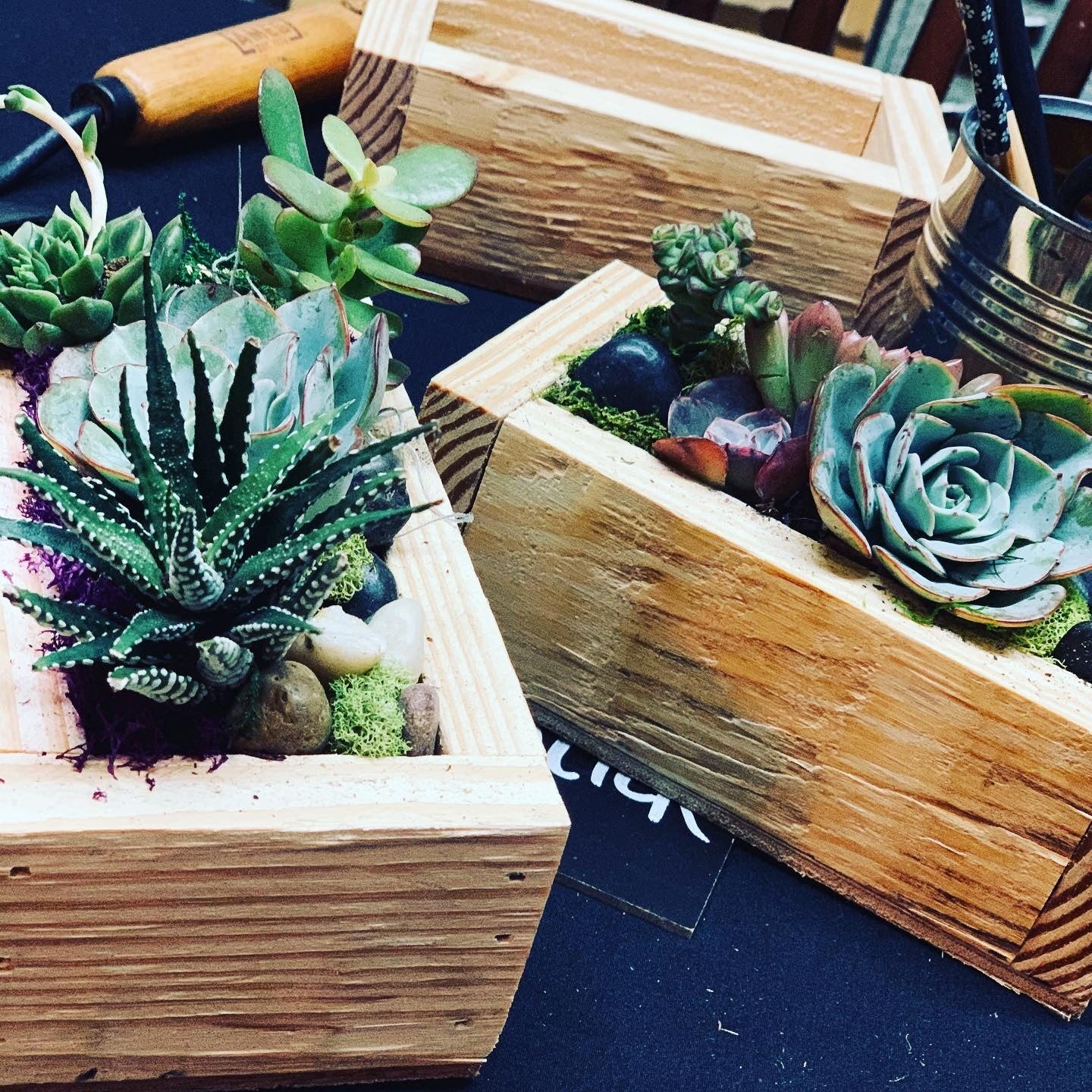 4x6 Take and Make DIY KIT in repurposed wooden planter