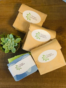SET OF 4 Tampa Succulents Handmade SOAPS by INDIGO BEE
