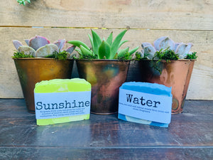 Mother's Day Gift Set -Copper Potted Succulent & Handmade Soap