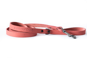 Sport Affordable Luxury Soft Leather Dog Lead Made in USA