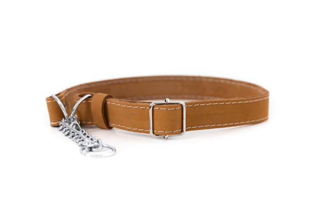 Euro Dog Soft Leather Dog Collar Martingale Made in USA Affordable Luxury 1