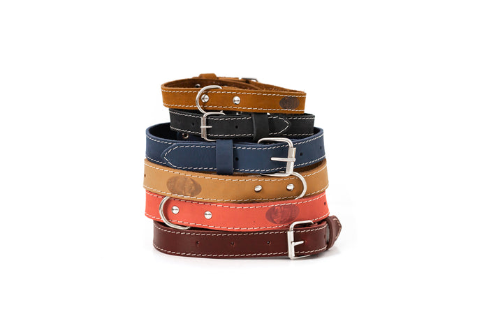 Euro Dog Soft Leather Dog Collar Adjustable Buckle Made in USA Affordable Luxury
