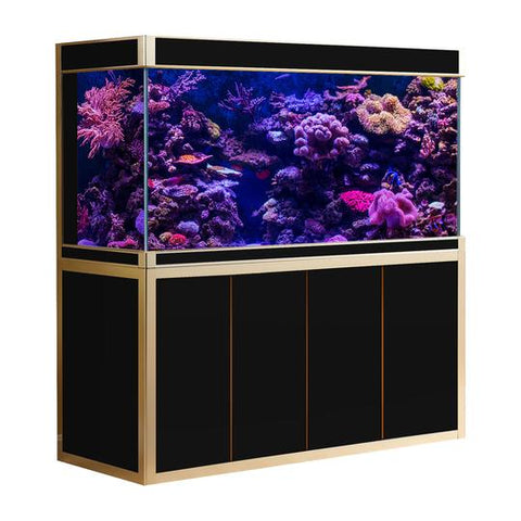 Aquadream Black & Gold Finish 250 Gallon Aquarium Fish Tank (AD-1980-BK)