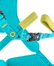 Load image into Gallery viewer, Edelrid - Fraggle Harness - Kids