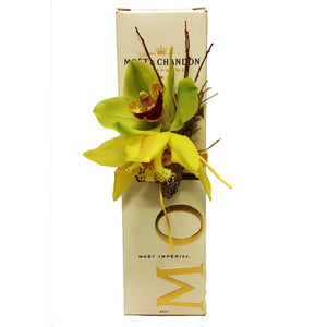Moet and Orchid