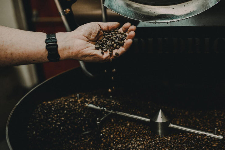 A hand pouring beans into our roaster