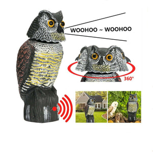 Powered Bird and Rodent Scaring Owl Decoy with Sound and Rotating Head