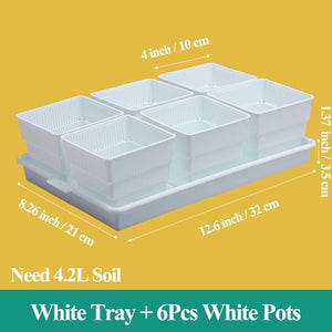 Succulent Pots With and Without Tray (50mm, 75mm, 100mm)