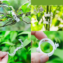 Load image into Gallery viewer, 50pcs Reusable Plant and Vine Clips