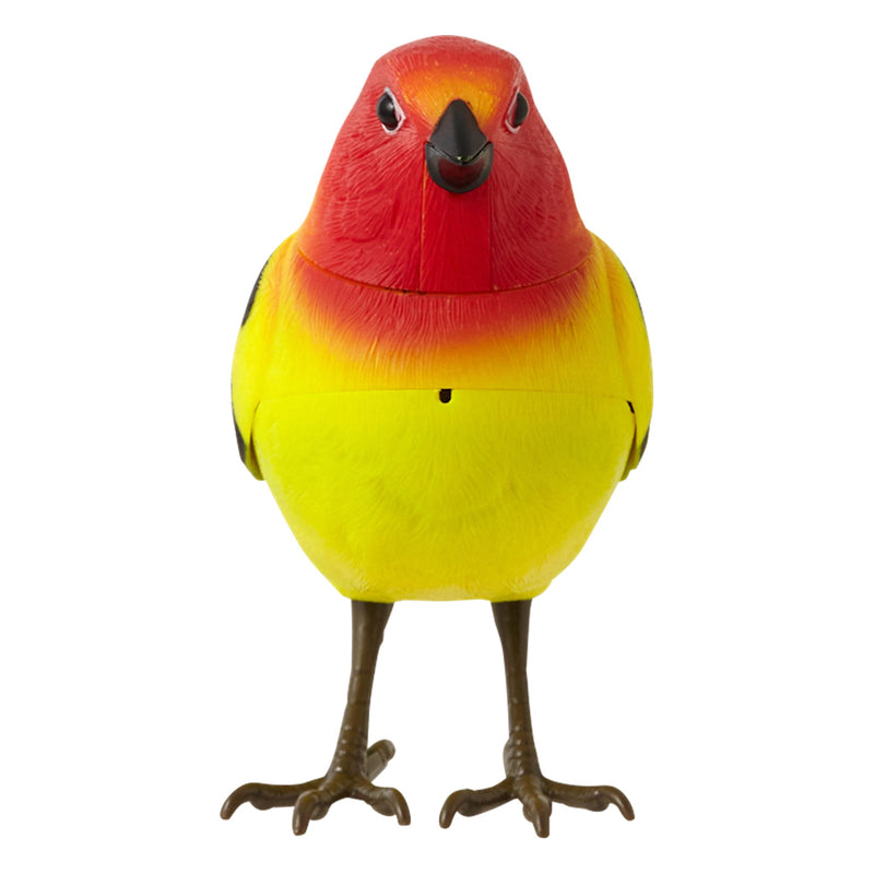 MOTION DETECTOR Music Bird Yellow
