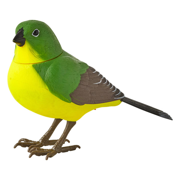 MOTION Detector Music Bird Green