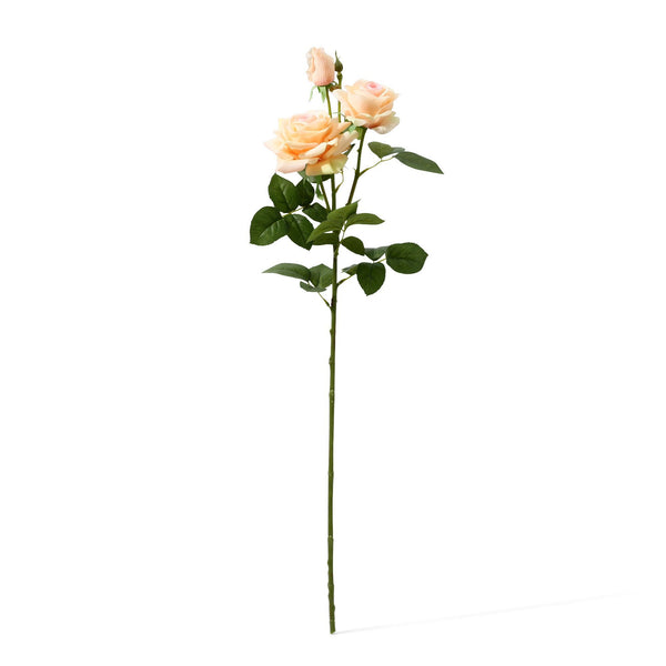20SS ART FLOWER RT ROSE 3  L L