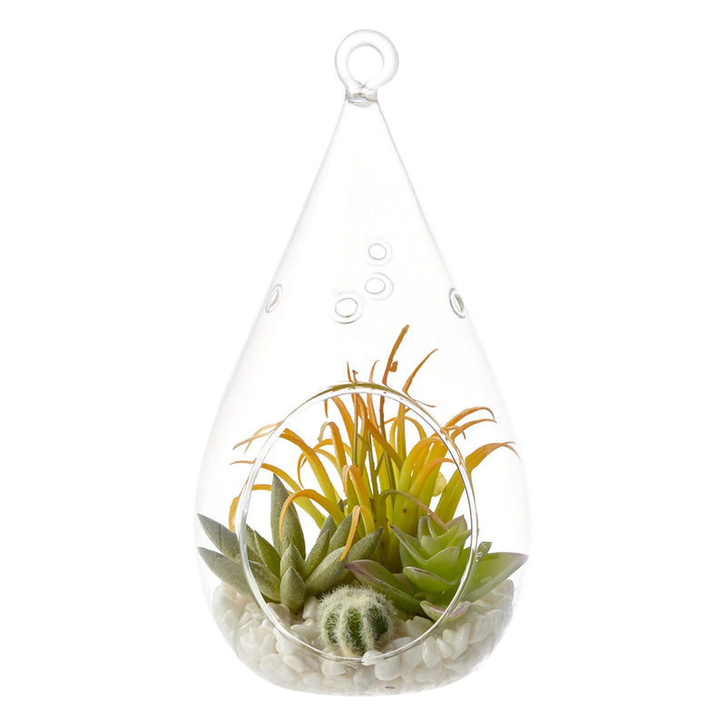 CARO Succulents Pot Drop