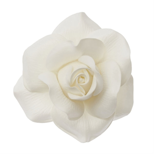 WALL FLOWER Rose Small White