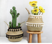 Basket Seagrass Basket Homeplistic