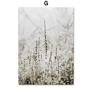 Canvas Prints Subconsciously Serene Canvas Prints Homeplistic