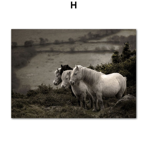 Fields & Figures Canvas Prints - Homeplistic - Free