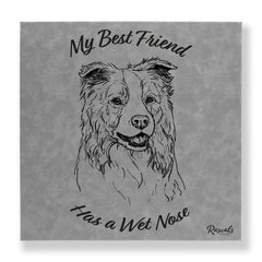 """My Best Friend Has A Wet Nose"" - Border Collie illustration laser-engraved onto high quality textured leatherette and stitched onto a box frame. This ready-to-hang, richly textured wall art is sure to impress - now available from Rascals Sporting Dogs."