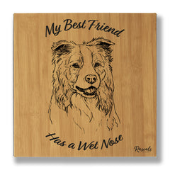 Border Collie 'Wet Nose' Leatherette Wall Art 14x14""