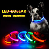 USB LED Pets (Dogs & Cats) Collar-1 Royal Living