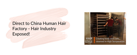 Direct to China Human Hair Factory - Hair Industry Exposed!