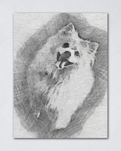 Charcoal Pet Portraits - Custom Pet Canvas