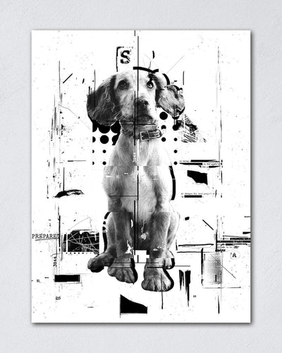 Funny Cats And Dogs - Custom Pet Canvas
