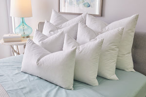 Pillow Inserts - Set of 2 - Zip & Mos