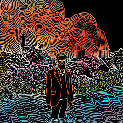 Iron & Wine ‎- Kiss Each Other Clean (Vinyl)