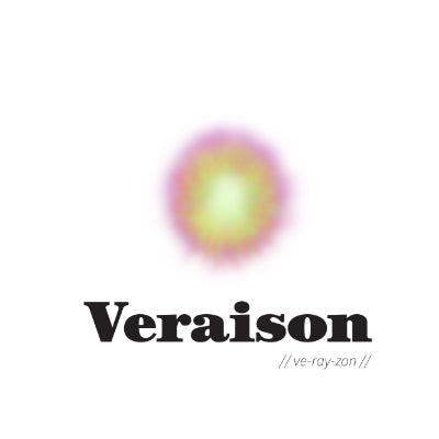Veraison Magazine : About Wine - Volume 1