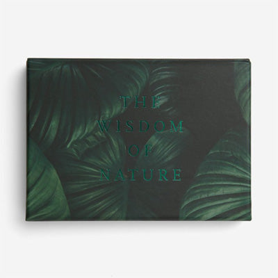 The School Of Life Card Set - Wisdom Of Nature