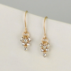 Sparkle Gold-filled/Sterling Silver Earrings