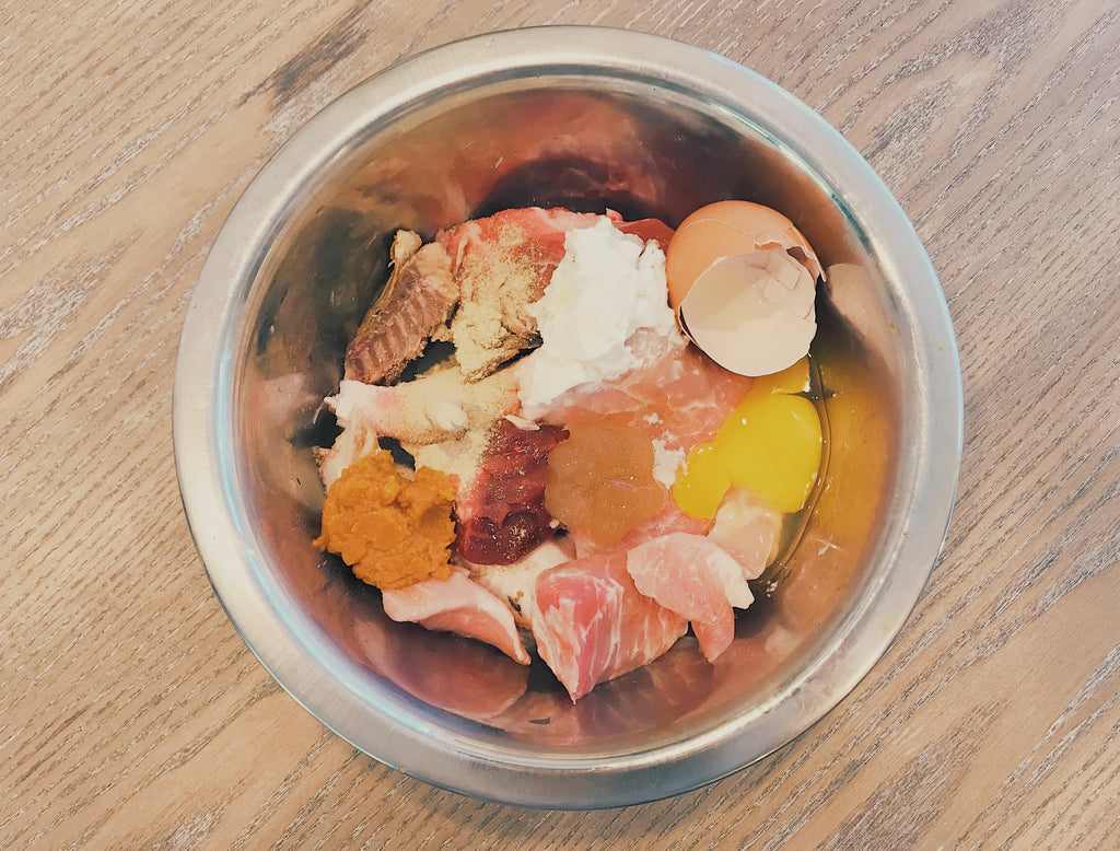 How to Transition Your Dog to a Raw Diet: Kono's Journey to Raw