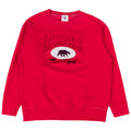 University of Alaska Fairbanks Sweatshirt