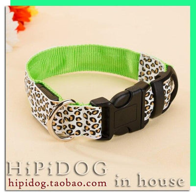 Glow in the Dark Safety Dog collar - lytebright