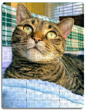 "Load image into Gallery viewer, 120 Piece Photo Puzzle  8""x 11"""