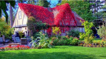Cottage in bloom - 5D Diamond Painting Kit
