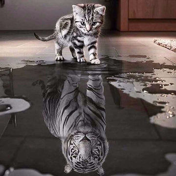 Cat Reflection - 5D Diamond Painting - Round