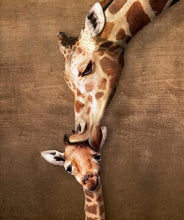 Love of the Giraffe - 5D Diamond Painting Kit