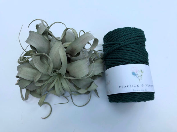 Dark green, 4mm, 3-ply twisted rope - recycled cotton