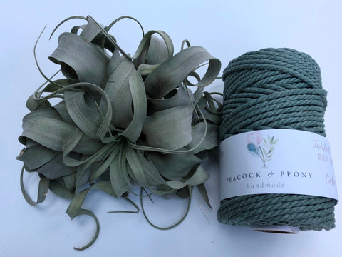 Sage Green, 4mm, 3-ply twisted rope - recycled cotton