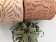 Pale Antique Pink, 8 mm, 130 plies supersoft single twisted cotton stringrope - recycled cotton