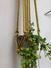 Sparkling golden macrame planthanger in two sizes