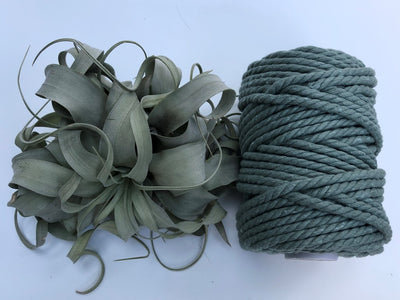 Sage Green, 6mm, 3-ply twisted rope - recycled cotton