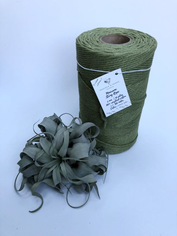 Wasabi green, 5 mm supersoft single twisted cotton stringrope - recycled cotton