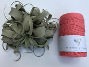 Salmon, 2.5mm, 3-ply twisted rope - recycled cotton
